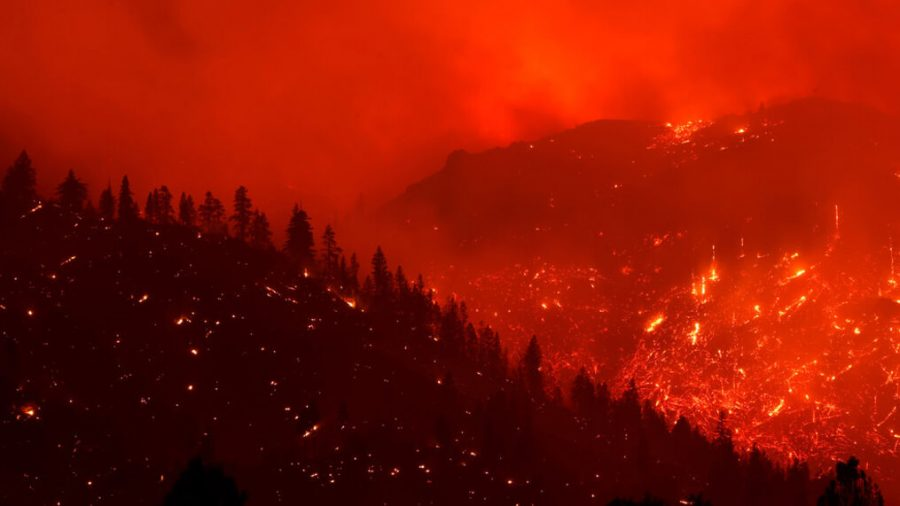 Wildfires+in+California